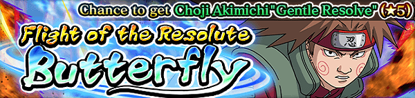 Flight of the Resolute Butterfly Banner