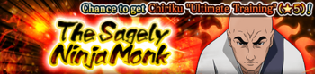 The Sagely Ninja Monk Banner