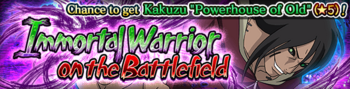 Immortal Warrior on the Battlefield Banner