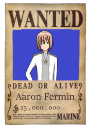 Aaron's wanted poster
