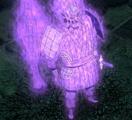 Cuerpo Completo Susanoo de Indra