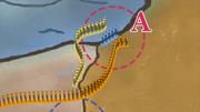 Estratégia de Shikaku2