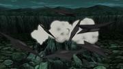Clones das Sombras da Fūma Shuriken