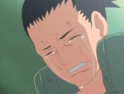 Shikamaru pleure