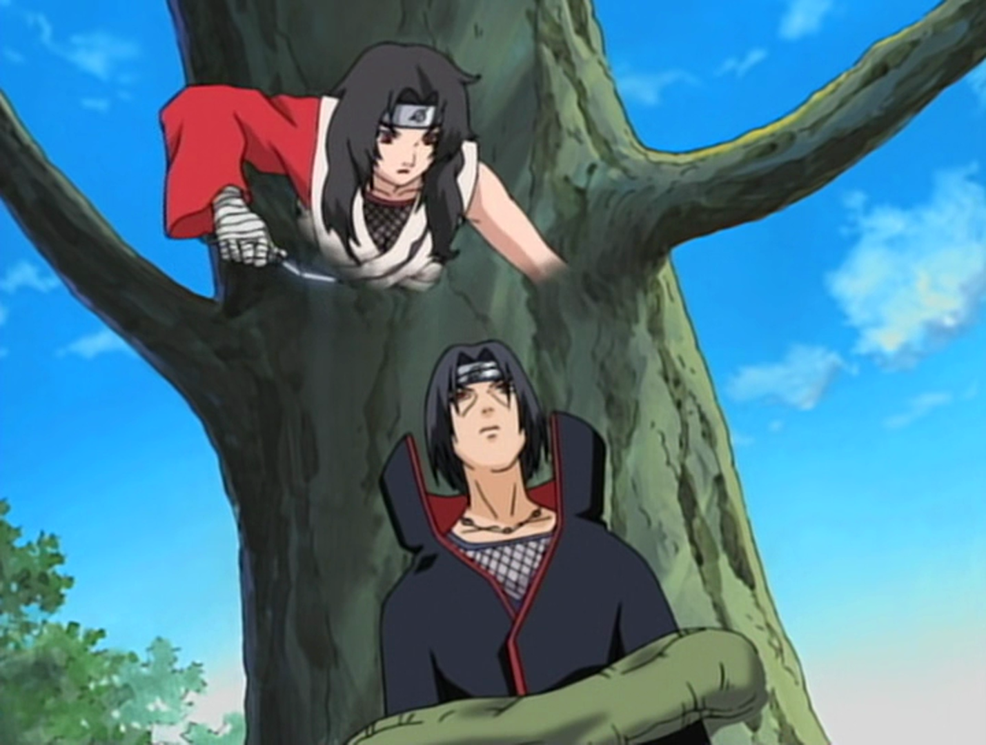 Demonic Illusion: Tree Binding Death | Narutopedia | FANDOM