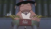 The Great Toad Sage