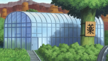 Suna Greenhouse Outside