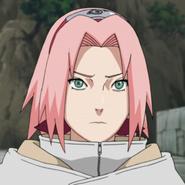 Sakura prof 1