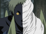 Zetsu Negro