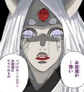 As Lágrimas de Kaguya