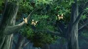 As Mariposas Ninja