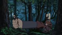 Técnica do Tamanho Múltiplo Parcial (Chōji - Filme)