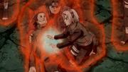 Sakura heals Shikamaru1