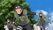 Hana, Kiba e Shino