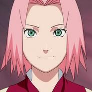 Sakura prof 4