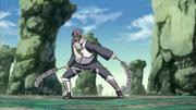 Toroi Shurikenjutsu