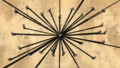 Black spider lily.png