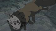 Defeated Nine Masked Beast
