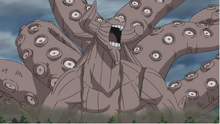 B transformed into Gyūki