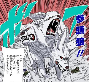 Transformación Mezclada de Hombre-Bestia Lobo de Tres Cabezas Manga