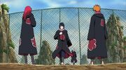 Team Hawk in Akatsuki