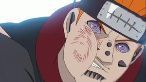 Kata de los Sapos Anime