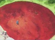 Naruto y Konohamaru llegan al prado carmesí