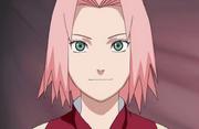 Sakura en la Segunda Parte