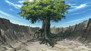Albero Divino della Terra