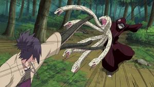 Manos de Muchas Serpientes Ocultas en las Sombras Anime