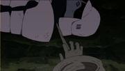 Absorción de Regeneración Celular Anime