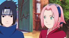 Sakura szerelme