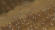 Grupo de Grandes Esferas Girando en Espiral Anime