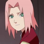 Sakura prof 3