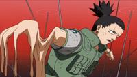 Mateki - Mugen Onsa (Anime)