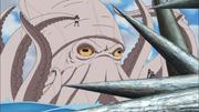 Lula Gigante pega Motoi