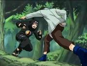 Shino vs Kankuro