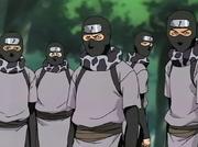 Ninjas estándares de Otogakure