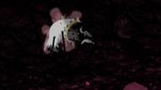 Zetsu Negro cae en el Chibaku Tensei