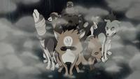 Os Ninken são invocados para caçar Orochimaru