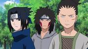 Sasuke, Kiba e Shikamaru observando a barricada de marionetes