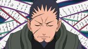 Shikaku's Intelligence