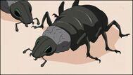 Insecto Kikaichū