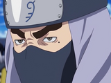 Ninja Capitão do Céu