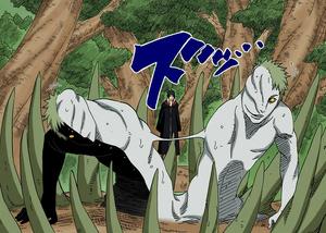 División de Cuerpos Manga Color