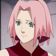 Sakura prof 2
