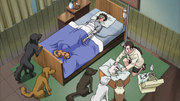 Hana tratando Akamaru