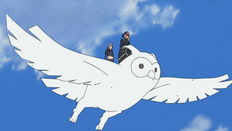 Arcilla Explosiva Búho Anime