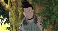 Rádio (Shikamaru)