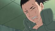 Shikamaru Chorando